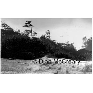 Dian McCreary Fine Art Photography - South Beach 7