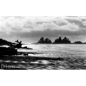 Dian McCreary Fine Art Photography - Chesterman Beach