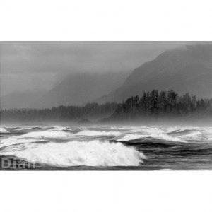Dian McCreary Fine Art Photography - Wickaninnish Beach 5