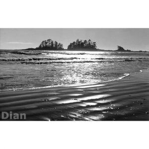 Dian McCreary Fine Art Photography - South Chesterman Beach 4