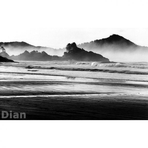 Dian McCreary Fine Art Photography - Morning Mist at Sunset Point