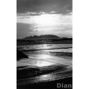 Dian McCreary Fine Art Photography - Lennard Island
